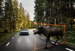 : Exterior Large Animal Detection Volvo S90 1